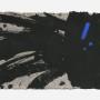 カリプソ2013 225×361変